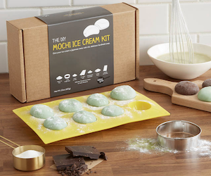 mochi ice cream kit